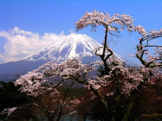 Informacion Sobre Japón -  - Buteler en Japón