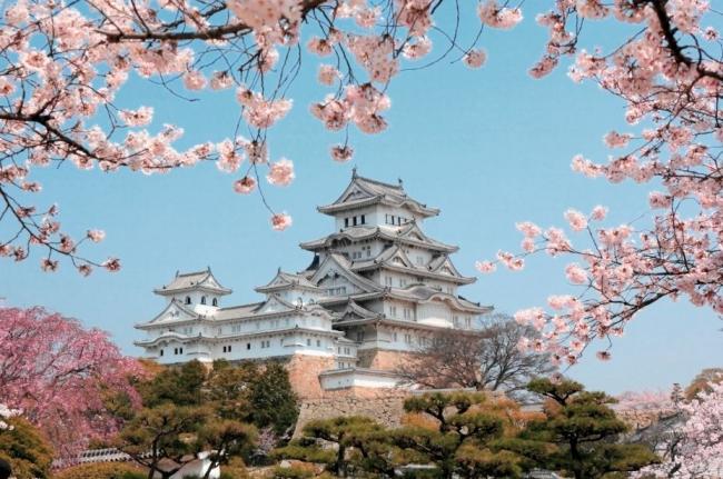 A JAPON EXPRESS DESDE ARGENTINA. Viaje con Guia de habla hispana - Buteler en Japón